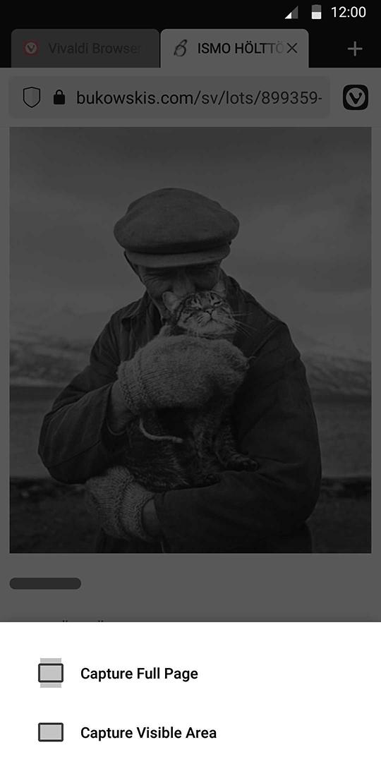 Vivaldi 页面截图