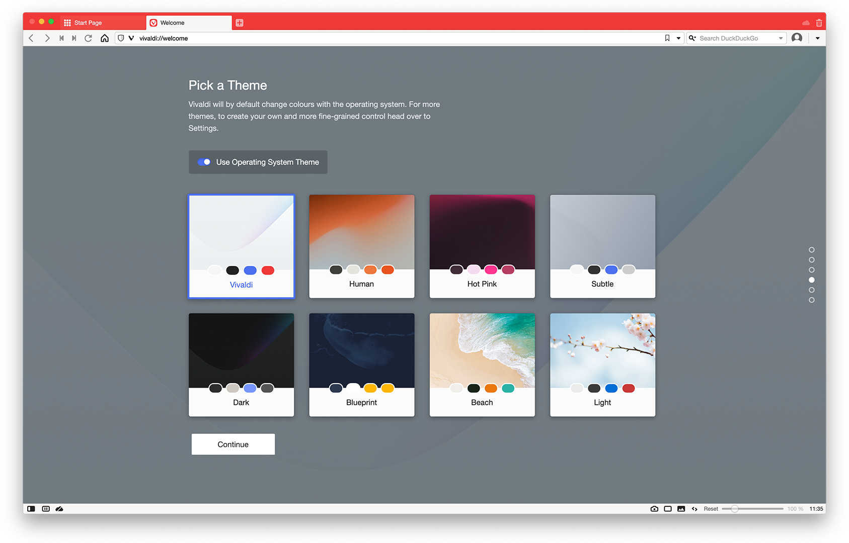 Themes in Vivaldi browser.