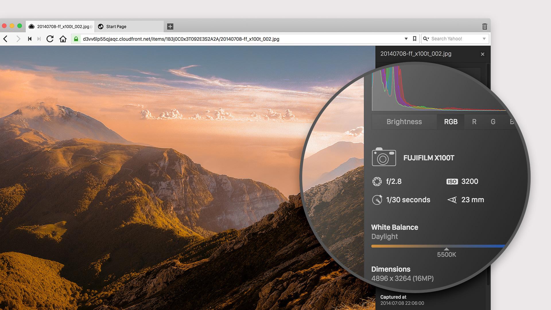 Image Properties tool in Vivaldi browser